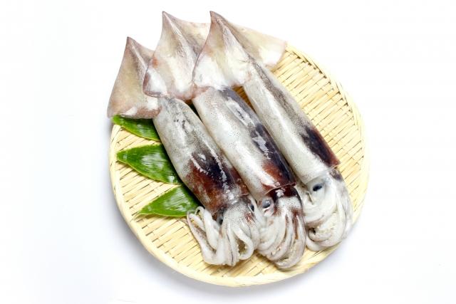 いかの煮物を柔らかくする方法や漁師が教える刺身の切り方とは?