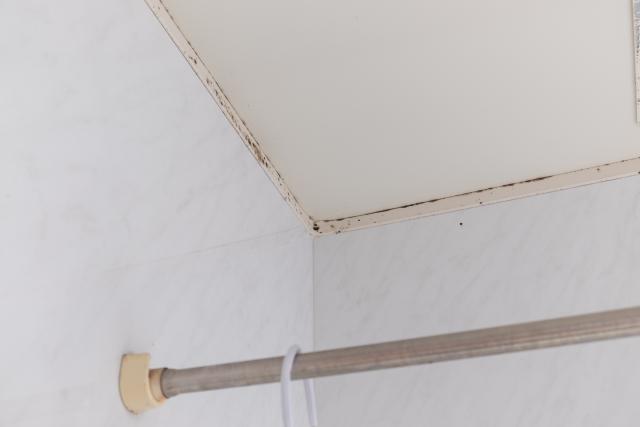浴室のカビ予防は毎日のひと手間で!簡単に対策できるアイテムも紹介!