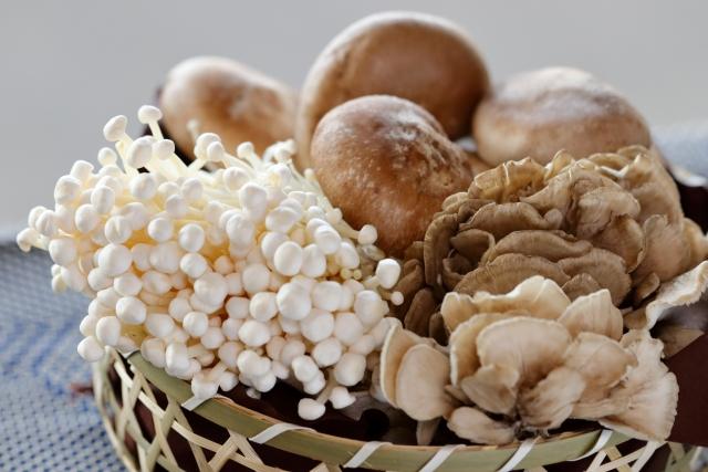 キノコの冷凍保存法や炊き込みご飯レシピをテレビ紹介!うま味アップ?