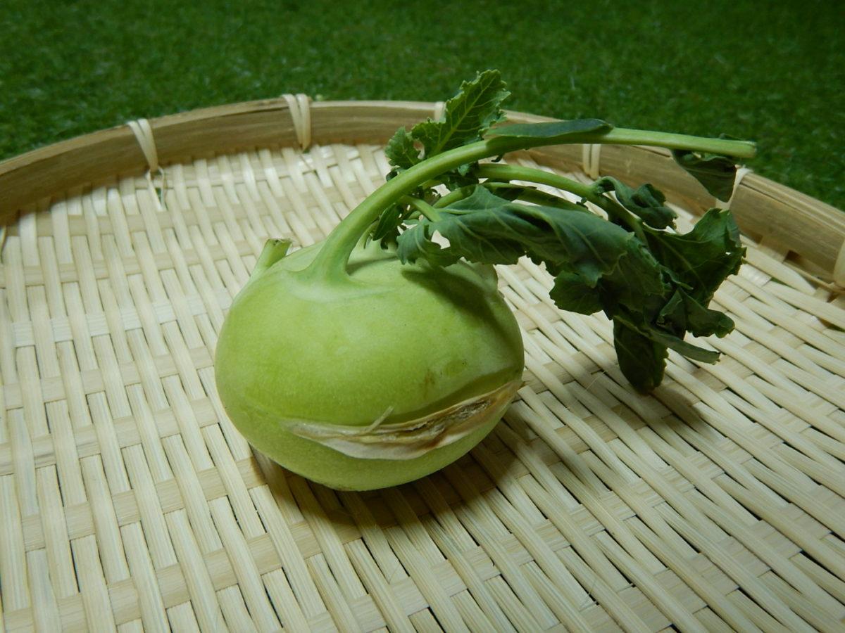 コールラビの食べ方!生でも美味しく食べれる簡単レシピ!どんな味?