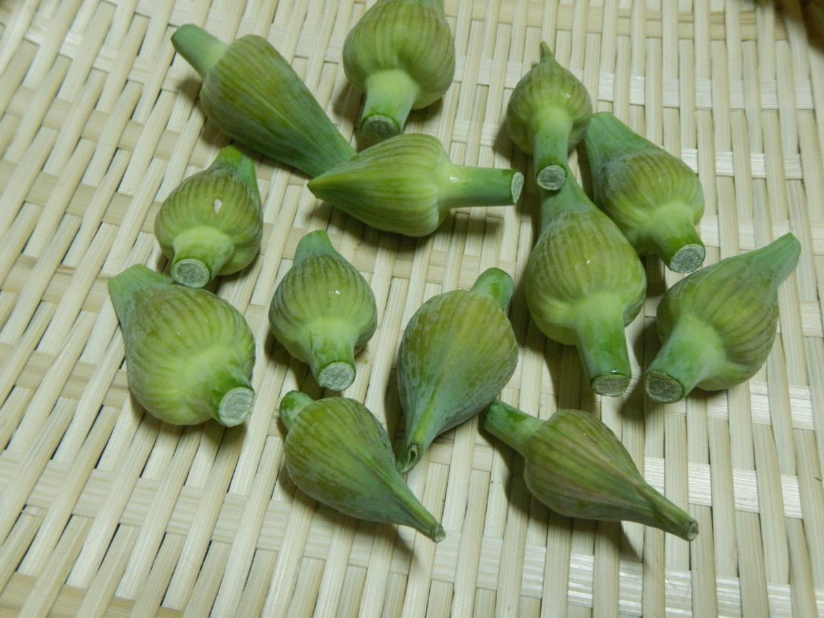 ニンニクの蕾の食べ方!花蕾の簡単レシピ3選!美味しい調理法を検証!