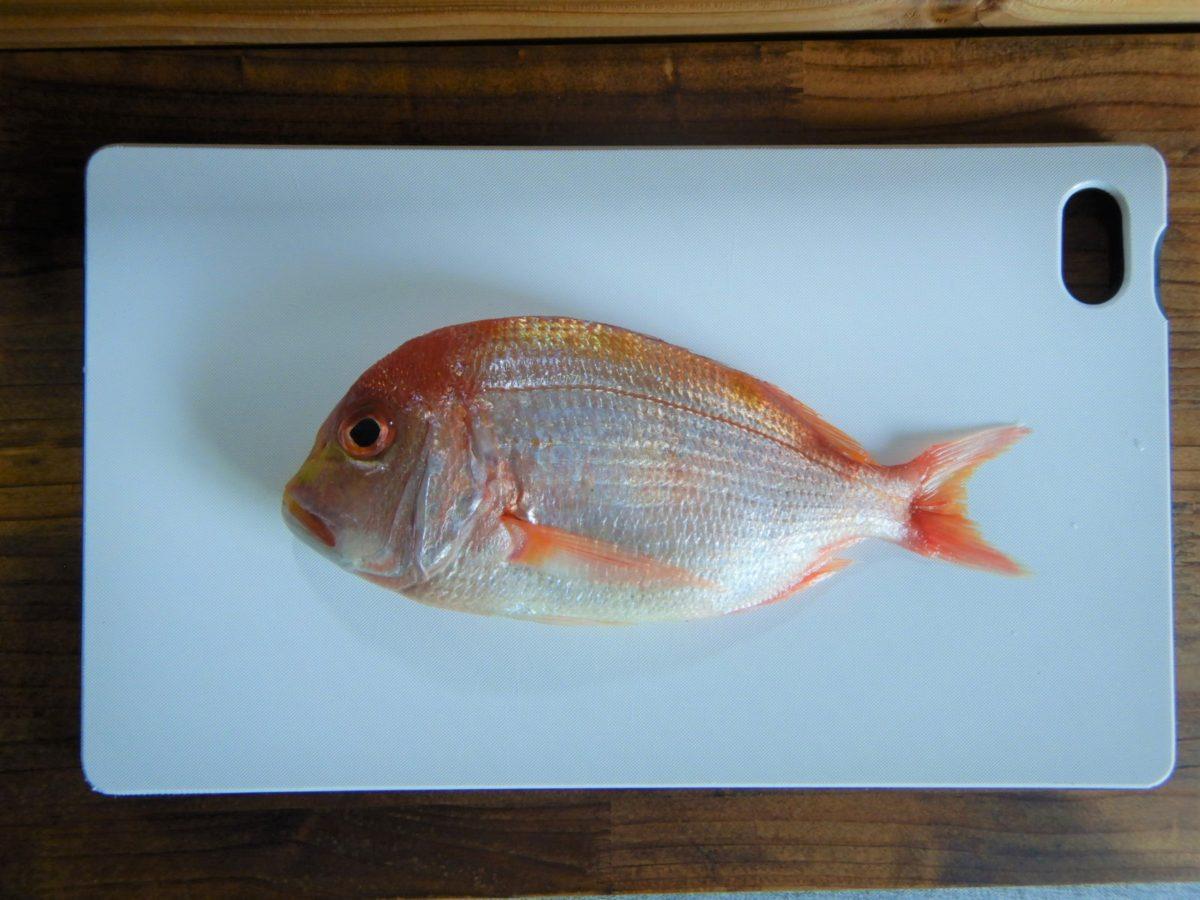黄鯛のレシピ!美味しい食べ方や下処理のやり方は?捌いて調理したよ